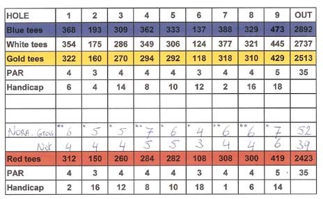Golf score card for stroke play